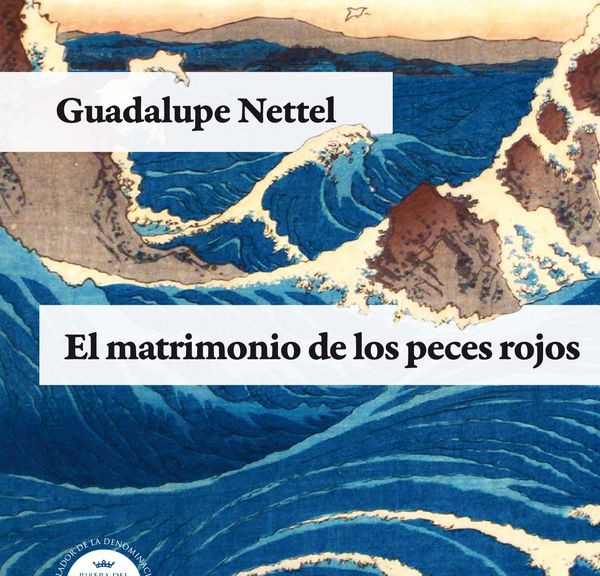 cubierta_NETTEL_20130423